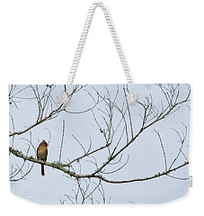 Weekender Tote Bag featuring the photograph Cardinal In Tree by Richard Rizzo