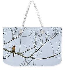 Cardinal In Tree Weekender Tote Bag by Richard Rizzo