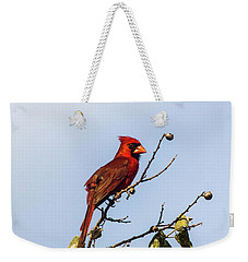 Weekender Tote Bag featuring the photograph Cardinal On Treetop by Robert Frederick