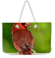 Cardinal Red Weekender Tote Bag