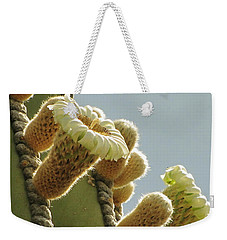 Weekender Tote Bag featuring the photograph Cardon Cactus Flowers by Marilyn Smith