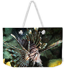Caribbean Lion Fish Weekender Tote Bag by Amy McDaniel