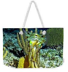Caribbean Squid At Night - Alien Of The Deep Weekender Tote Bag by Amy McDaniel
