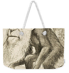 Caricature Of Charles Darwin Weekender Tote Bag
