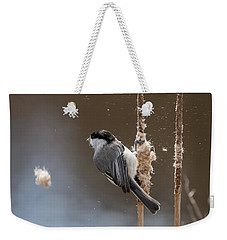 Carolina Chickadee Feeding On Cattail Weekender Tote Bag