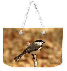 Carolina Chickadee On Branch Weekender Tote Bag