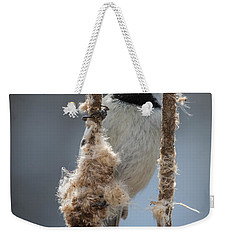 Carolina Chickadee On Cattails Weekender Tote Bag