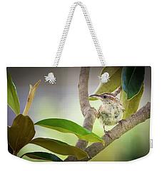 Carolina Wren #1 Weekender Tote Bag