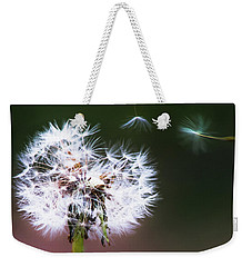 Weekender Tote Bag featuring the photograph Carried By The Wind by Parker Cunningham