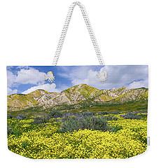 Carrizo Spring Weekender Tote Bag