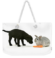 Weekender Tote Bag featuring the photograph Carrots Are For Pups, Too by Warren Photographic