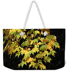 Weekender Tote Bag featuring the photograph Cascading Leaves by Doris Potter