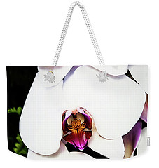 Weekender Tote Bag featuring the photograph Cascading Moth by Jessica Manelis