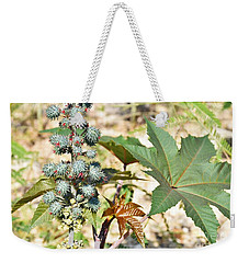 Weekender Tote Bag featuring the photograph Castor Oil Plant by Ray Shrewsberry