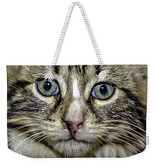 Cat 1 Weekender Tote Bag