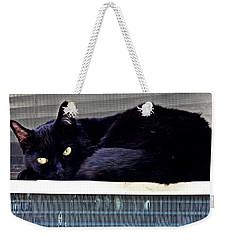 Cat Conditioner Weekender Tote Bag