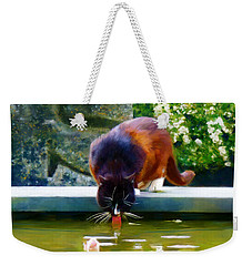 Weekender Tote Bag featuring the painting Cat Drinking In Picturesque Garden by Menega Sabidussi