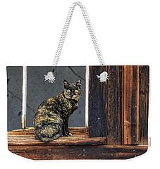 Cat In A Window Weekender Tote Bag by Scott Warner