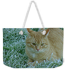 Cat In Frosty Grass Weekender Tote Bag