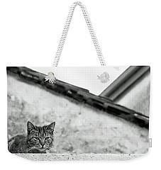 Cat On A Roof, Varenna Weekender Tote Bag by Brooke T Ryan