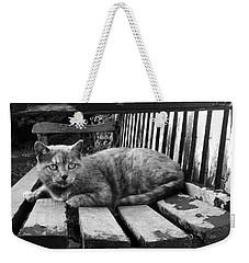 Cat On A Seat Weekender Tote Bag by RKAB Works