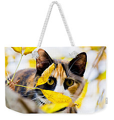 Cat On The Prowl Weekender Tote Bag by Jonny D