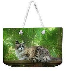 Cat On The Railing Weekender Tote Bag