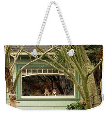 Cat Pals Waiting Weekender Tote Bag