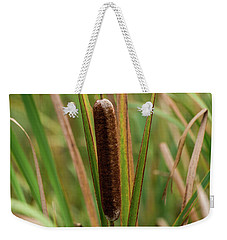 Weekender Tote Bag featuring the photograph Cat Tail by Paul Freidlund