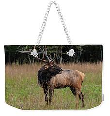 Weekender Tote Bag featuring the digital art Cataloochee Valley Elk  by Chris Flees