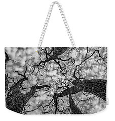 Catalpa And Altostrato Q Weekender Tote Bag