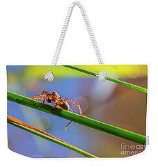 Weekender Tote Bag featuring the photograph Catch by Jivko Nakev