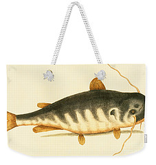 Catfish Weekender Tote Bag by Mark Catesby