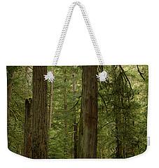 Cathedral Grove Weekender Tote Bag