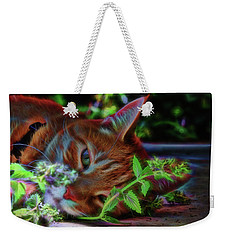 Catnip Chillin Weekender Tote Bag
