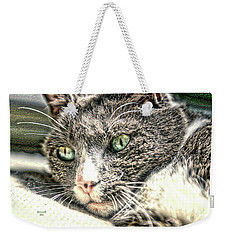 Cats Eyes Weekender Tote Bag by Dennis Baswell