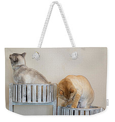 Cats In Baskets Weekender Tote Bag