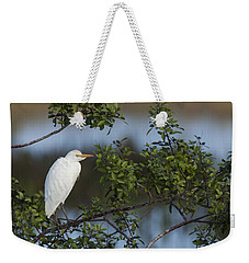 Cattle Egret In The Morning Light Weekender Tote Bag