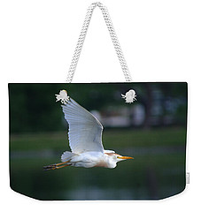 Cattle Egret Profile Portrait In Flight Weekender Tote Bag
