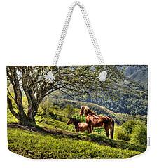 Cavalla Plains Horses - Cavalli Al Pian Della Cavalla Weekender Tote Bag