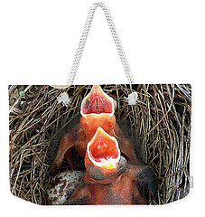 Cavernous Cardinals Weekender Tote Bag