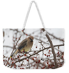 Weekender Tote Bag featuring the photograph Cedar Wax Wing  by Betty Pauwels