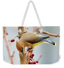 Cedar Waxwing 2 Weekender Tote Bag