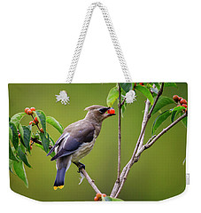 Weekender Tote Bag featuring the photograph Cedar Waxwing 2 by Gary Hall