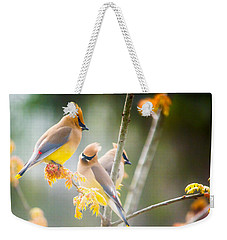 Weekender Tote Bag featuring the photograph Cedar Waxwing Beauty by Parker Cunningham