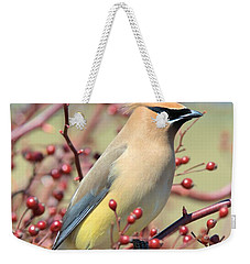 Weekender Tote Bag featuring the photograph Cedar Waxwing by Debbie Stahre