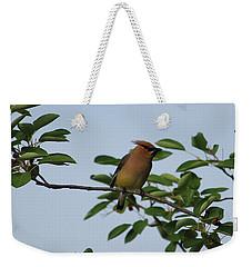 Cedar Waxwing Profile Weekender Tote Bag