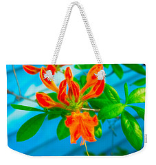 Weekender Tote Bag featuring the photograph Celestial Skies Budding Azalea by Aimee L Maher Photography and Art Visit ALMGallerydotcom