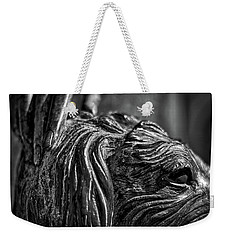 Cemetery Statue - Buenos Aires Weekender Tote Bag by Stuart Litoff