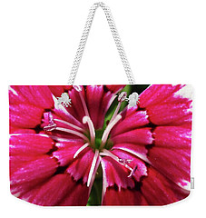 Center Of A Sweet William Weekender Tote Bag by Mary Ellen Frazee